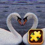Swan Puzzle Challenge